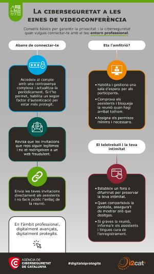 Infografia àmbit professional